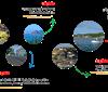Cơ hội cuối đầu tư đất ven Vịnh Xuân Đài với giá khung giá 2019 - chỉ hơn 568tr/nền tìm hiểu ngay!