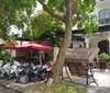 Chính chủ cần bán gấp Biệt thự Shophouse Phong Lan-Vinhomes The Harmony