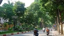 Nhà mặt phố Nguyễn Tri Phương, Ba Đình