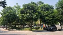 Bán biệt thự đơn lập nhỏ xinh Vinhomes Riverside, full đồ, view vườn hoa, giá chỉ 18 tỷ