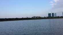 Cần cho thuê căn hộ Westbay Ecopark Văn Giang, Hưng Yên