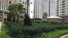 Bán căn hộ 62.5m2 tại Xuân Mai Complex, Hà Đông