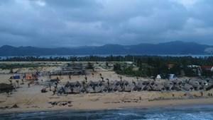 KDC Hòa Lợi - 3 mặt biển duy nhất tại Phú Yên - CĐT Đất Xanh phân phối