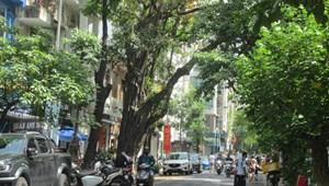 CC bán nhà mặt phố Triệu Việt Vương sầm uất gần Tuệ Tĩnh 88m2x5T chỉ 42.89 tỷ