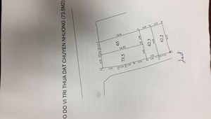 Chính chủ cần bán gấp mảnh đất 73,5 m2, mặt đường ngõ 68 Nguyễn Văn Linh, Long Biên