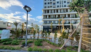 Ecolife Riverside nơi an cư lập nghiệp tốt lành cho khách hàng
