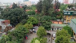 Bán nhà lô góc view công viên phố Nguyễn Phong Sắc, DT 50mx6T, giá 10 tỷ