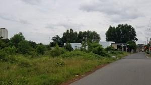 Bán đất Sào – Mẫu tại Xã Long Phước – Long Thành – Đồng Nai 1000m2 = 500tr