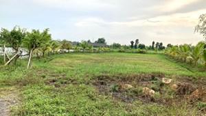 Bán đất vườn mặt tiền đường ô to tải xã Bình Mỹ - Củ Chi