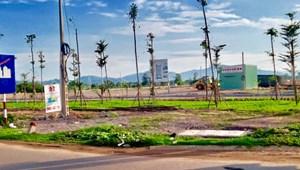Bán đất Gần Sân Bay Phù Cát Bình định – Đất KĐT Cẩm Văn