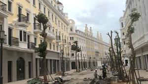 Mua nhà phố Hạ Long, kinh doanh khách sạn, nhà hàng sinh lời nâng tầm du lịch, 120-240m2, 16 - 50 phòng