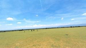 Đất Bình Thuận gần bàu trắng giá chỉ từ 60.000đ/m2